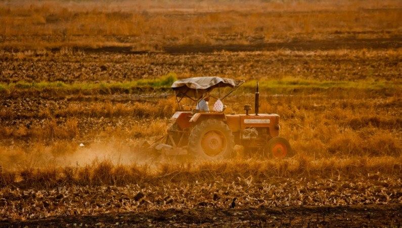 Jak duże zagrożenie stanowią pestycydy w wodzie pitnej?